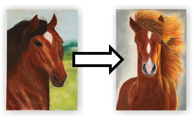 kandidát kůň